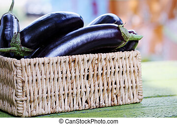 Ripe eggplant in a wicker basket