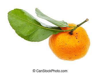 ripe fresh Abkhazian mandarine with green leaves