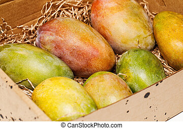 ripe fresh colorful mango in a box
