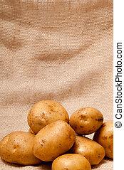 potato tubers - ripe fresh potato tubers in brown sackcloth