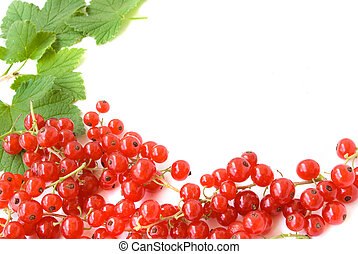 ripe fresh redcurrant with green leaves making frame isolated on white background