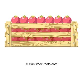 Ripe fresh tomatoes in wooden box isolated illustration
