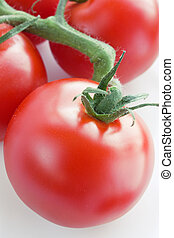 Ripe fresh tomatoes on a branch