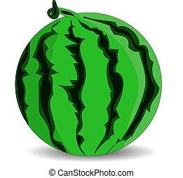 Ripe green watermelon, cartoon on a white background.