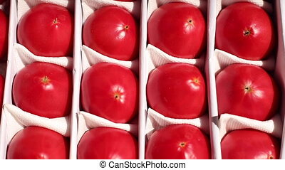 Ripe juicy fresh vegetables arranged in the container - Top ...
