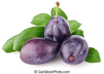 ripe juicy plum with green leaf