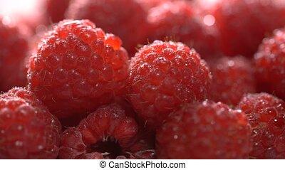 Ripe juicy raspberry rotates - Raspberries rotate on the...