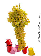 Ripe large bunch of grapes of sultana on a white background with colored buckets