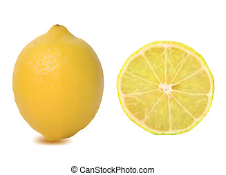 Ripe lemons isolated on white. Vector