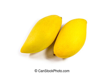 Ripe mangoes on white background