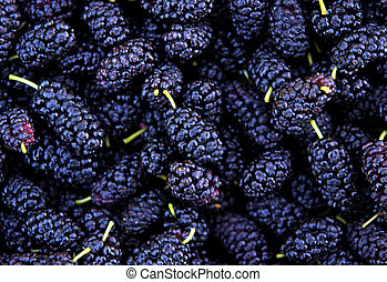 Ripe mulberry berries