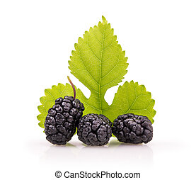 ripe mulberry with a leaf