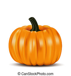 Ripe orange pumpkin vegetable