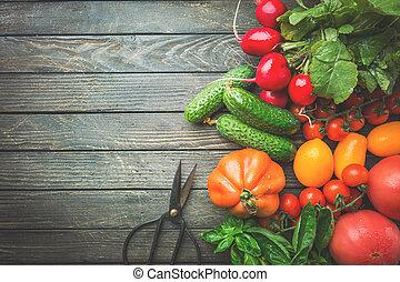 ripe organic vegetables