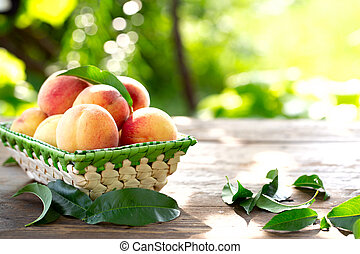 ripe peaches on the table