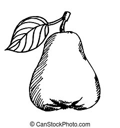 pear clipart black and white. ripe pear - vector illustrations of sketch with. clipart black and white
