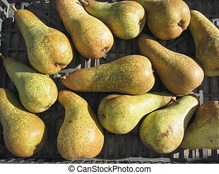 Ripe pears in box