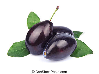 Ripe plum fruit on white background
