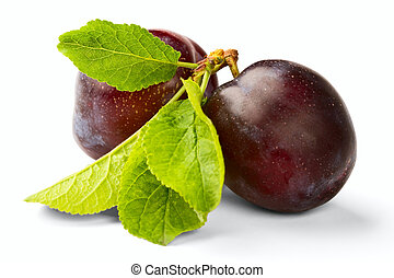 ripe plum isolated on a white background