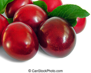 ripe plum, isolated on white background