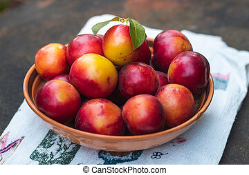 Ripe plums in a plate. Plate with plums on the table.