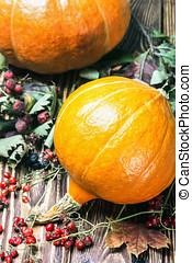 ripe pumpkins in autumn maple leaves