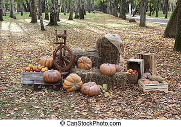 ripe pumpkins on bales of straw and apples in a wicker basket