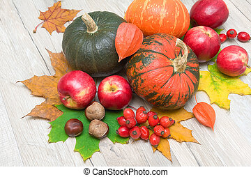 ripe pumpkins, red apples, ripe berries rose hips, chestnuts and autumn leaves on wooden boards. horizontal photo.