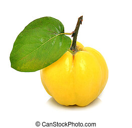 Ripe quinces isolated on white
