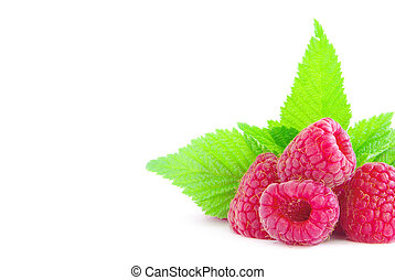 ripe raspberries isolated on white background