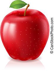 Ripe red apple. Illustration on white background