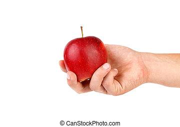 Ripe red apple on hand.