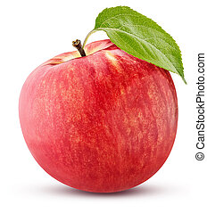 ripe red apple with a green leaf isolated on white