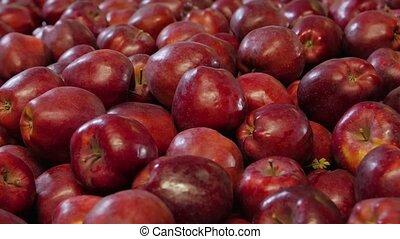 Ripe red apples fruit shop camera movement closeup background