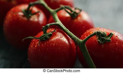 Ripe red cherry tomatoes on branch