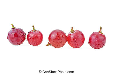 Ripe red grapes with water drops isolated on a white background