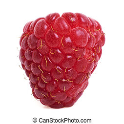 Ripe red raspberry isolated on white background