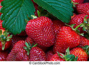 Ripe red strawberries with green leaves, close-up