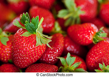 red strawberries - ripe red strawberries with stems and ...