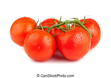 Ripe red tomatoes with water drops