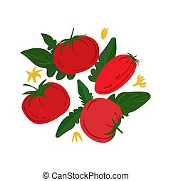 Ripe red tomatos and leaves on a white background.