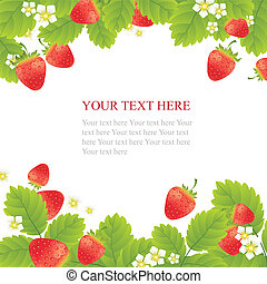 Ripe strawberries with leaves and flowers on white background