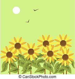 Ripe sunflowers under dim sun in green sky with birds