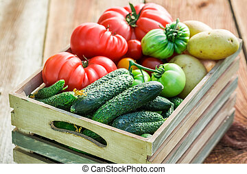 Ripe tomatoes and cucumbers in greenhouse
