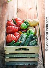 Ripe tomatoes and cucumbers in wooden box