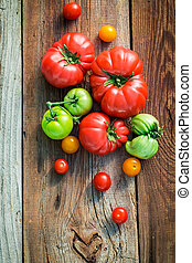Ripe tomatoes in the countryside