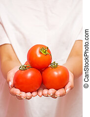 ripe tomatoes in the hands of a girl
