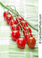 ripe tomatoes over green