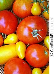 Ripe tomatos