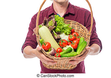 Ripe vegetables in a basket close-up in the hands of a farmer on a white background